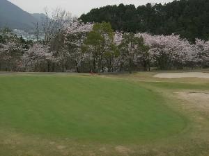 第6回のじぎくオープンゴルフ選手権大会1次予選開催のご案内
