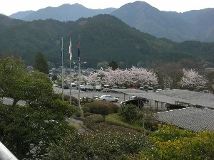 2012年粟賀ゴルフ倶楽部「桜の風景」(1)