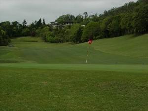 新緑が美しい感動のゴルフシーズンとなっています